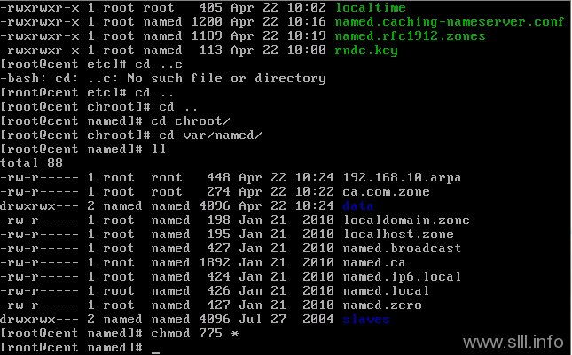 CentOS/Linux域名服务器/DNS配置 - 36
